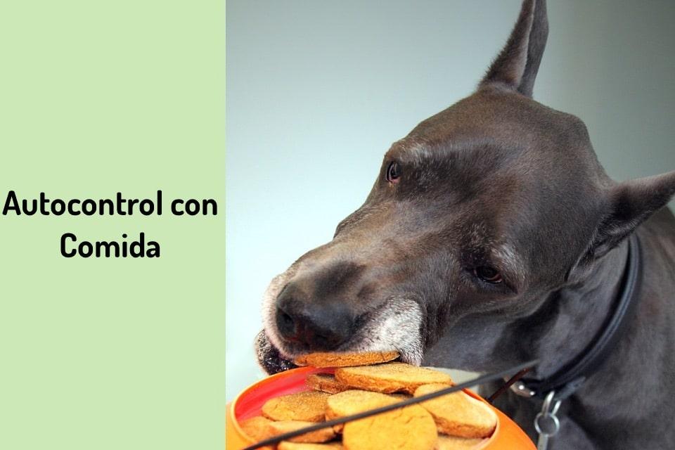 autocontrol con comida