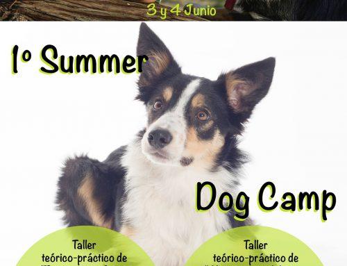 1 ͤʳ Summer Dog Camp: El Perro de Deporte