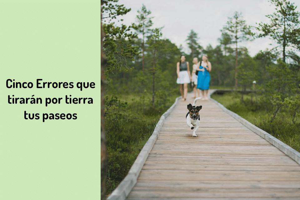 Cinco errores que tiraran por tierra tus paseos