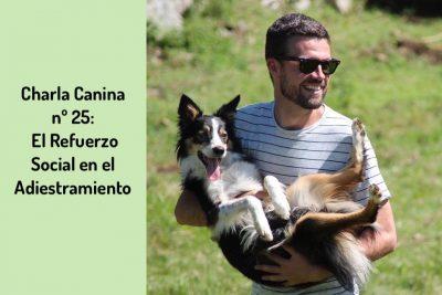 Charla Canina nº 25 El Refuerzo Social en el Adiestramiento