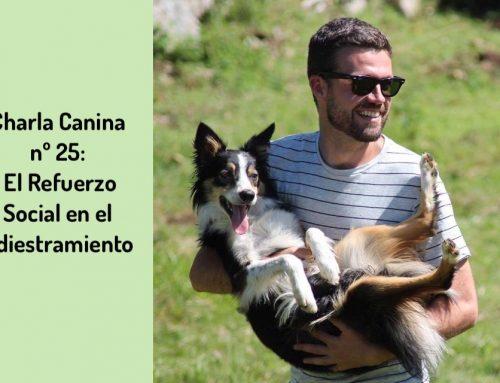 Charla Canina nº 25: El Refuerzo Social en el Adiestramiento