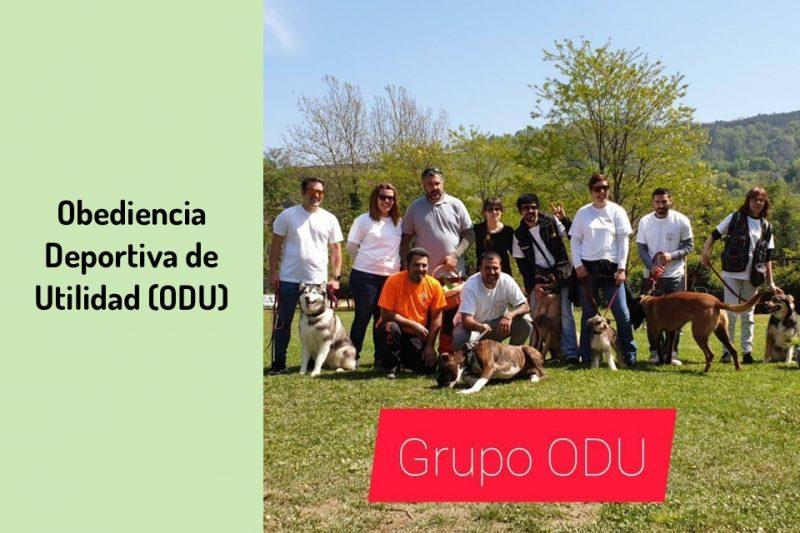Adiestramiento en Obediencia Deportiva de Utilidad (ODU)