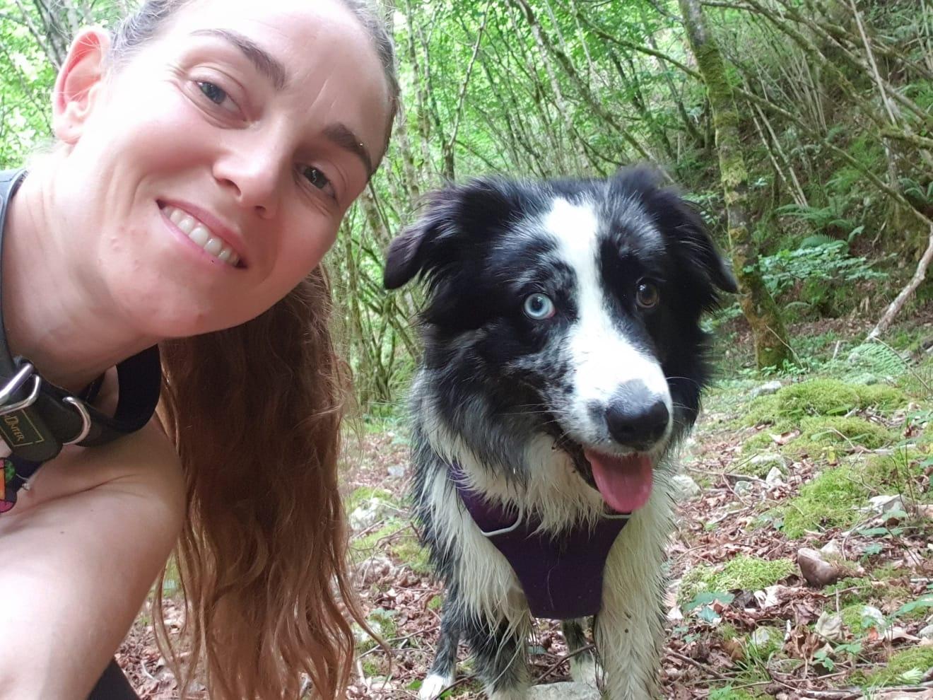 Formacion canina Online
