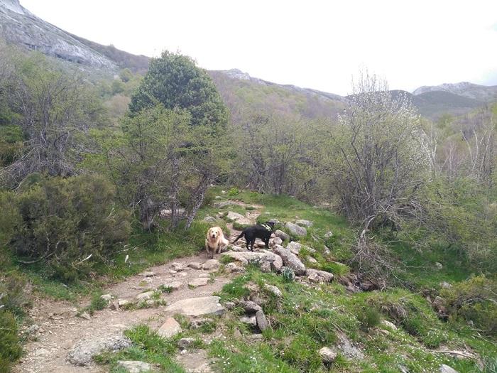 Nacimiento del río Pisuerga, Palencia