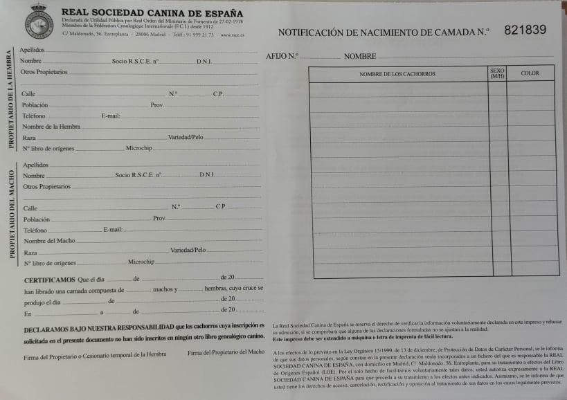 SOLICITUD DE INSCRIPCION EN EL PEDIGREE