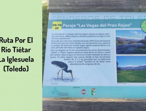 Ruta por el Río Tiétar con mis perros ( La Iglesuela, Toledo)