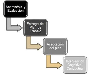 Proceso Adiestramiento Individualizado